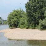 Neckarinsel