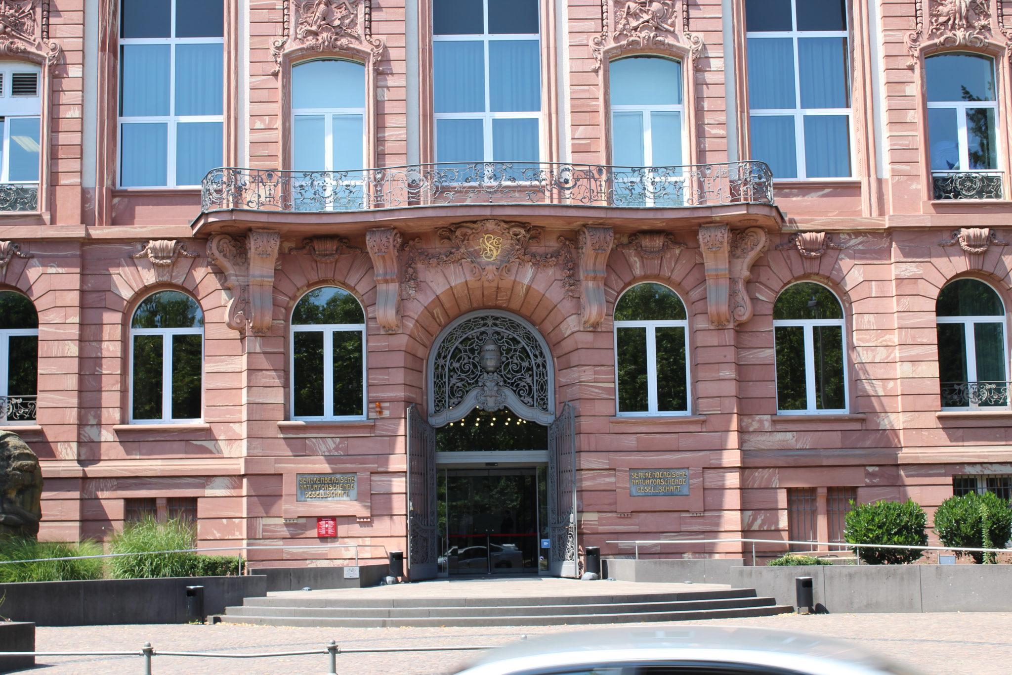 Top Sehenswürdigkeit Frankfurt: Senckenberg Museum