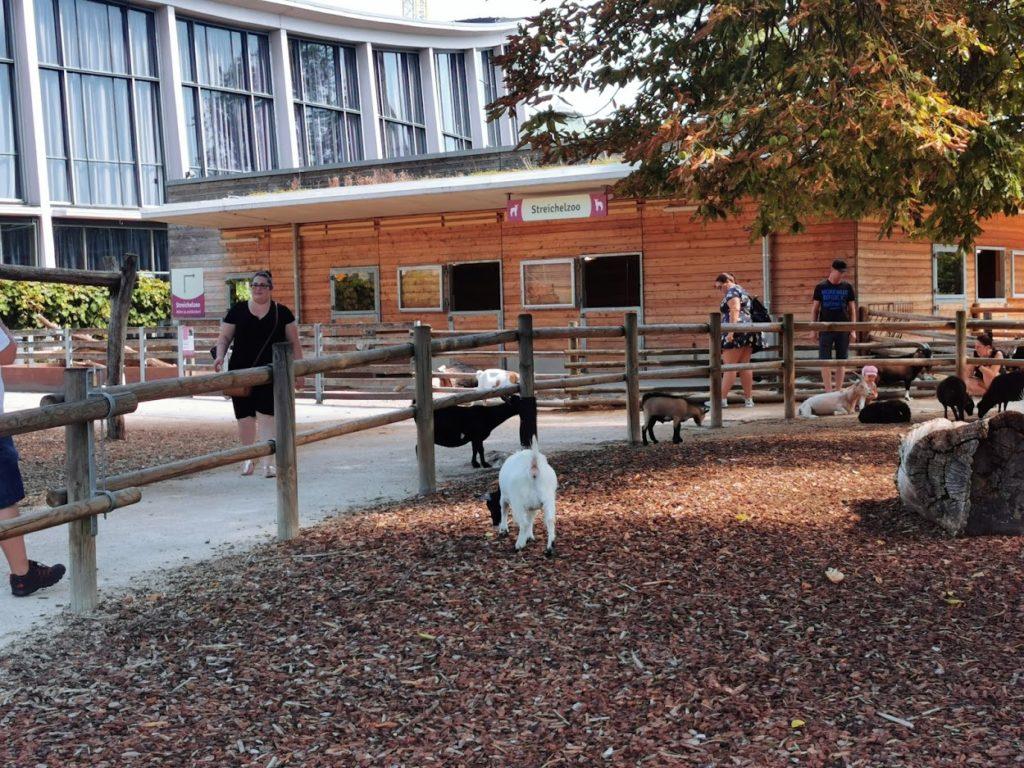 Sehenswürdigkeiten Karlsruhe: Zoologischer Garten